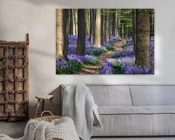 Pad door de hyacinten sur Edwin Mooijaart