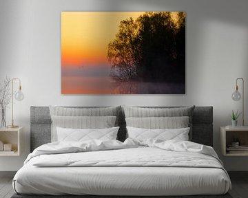 Foggy Sunrise 'Silhouettes' sur William Mevissen