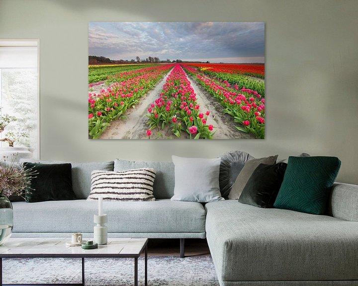 Sfeerimpressie: Bollenveld in Groningen van Ron Buist