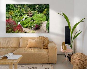 Japanse tuin in Powerscourt Gardens von Eddo Kloosterman