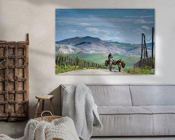 Bauer Atlasgebirge von Peter Vruggink