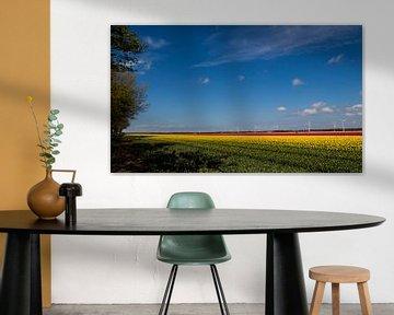 Tulpenveld Zeewolde van Patrick Ruitenbeek