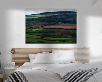 Somerset Landscape von Hans Kool