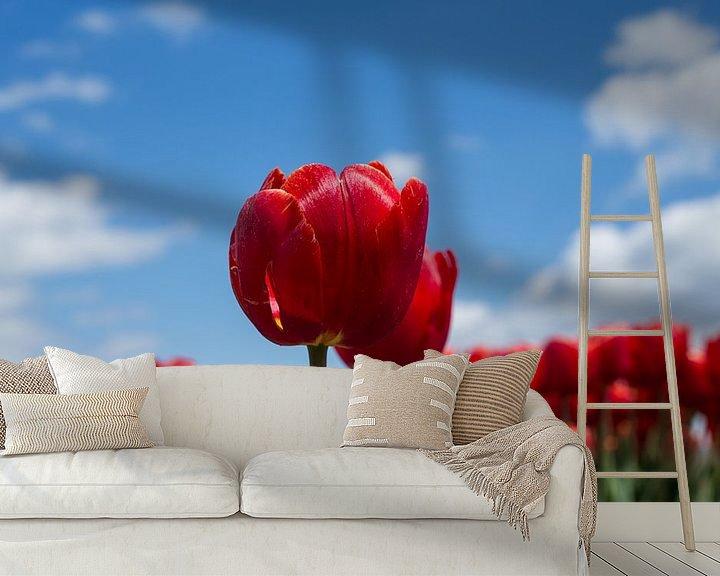 Sfeerimpressie behang: Hollandse tulpen van Saskia Bon
