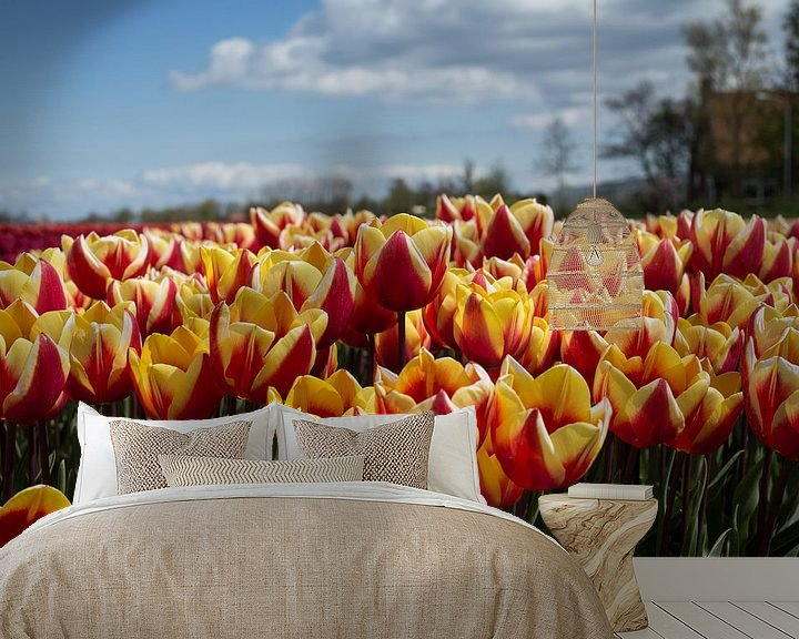Sfeerimpressie behang: Tulpenveld van Saskia Bon