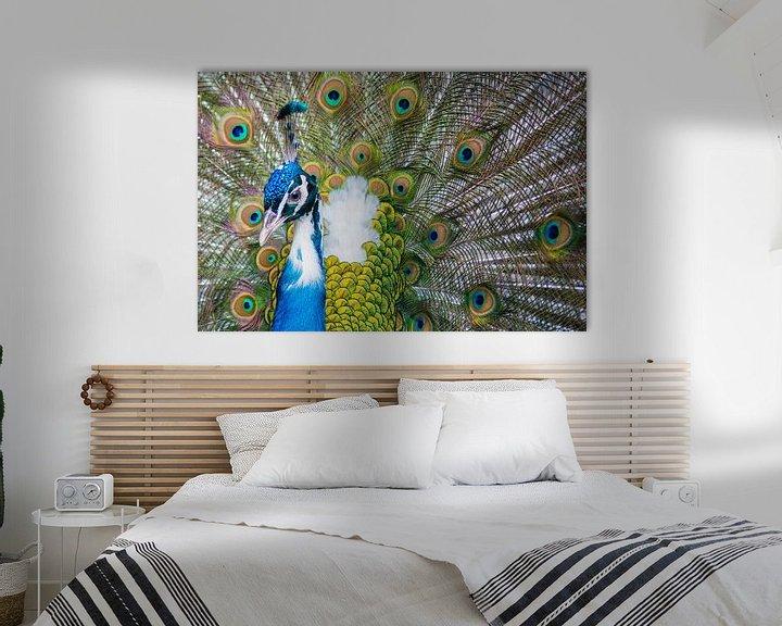 Sfeerimpressie: Peacock van Jelmer Jeuring
