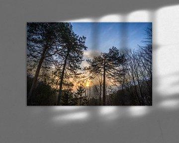 Sunrise van Peter Oslanec