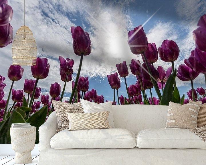 Sfeerimpressie behang: Tulpen en Hollandse luchten.. van Miranda van Hulst