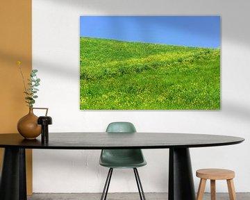 Meadow with rape blossoms van Gisela Scheffbuch