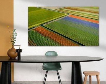Färgstarka diagonaler van Anders Andersson