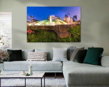 Hofpleinfontein (Hofpleinvijver) van Prachtig Rotterdam