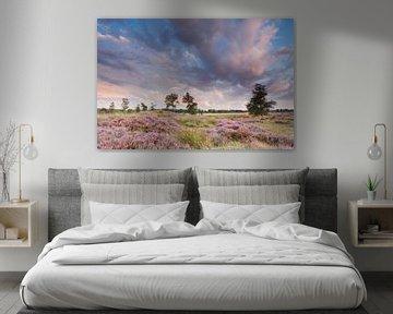 Roze pracht van Karla Leeftink