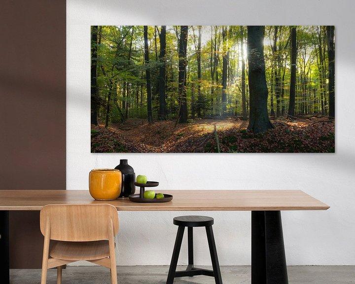 Sfeerimpressie: Zonnestraal in het bos van Chris van Kan