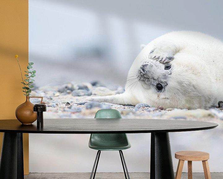 Impression: Zeehond  sur Elles Rijsdijk
