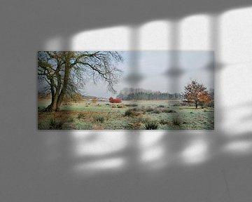 Winterland van Esther's Photos
