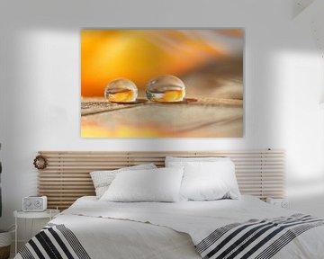 Yellow Dream von Carla Mesken-Dijkhoff