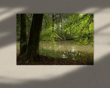 Doorkijkje naar de Kromme Rijn van Marijke van Eijkeren