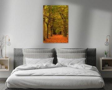 Herfst in bos van Artstudio1622