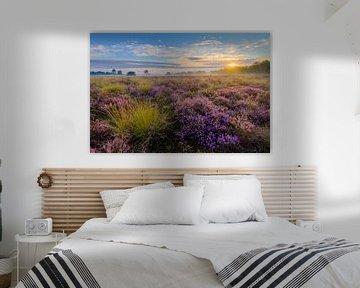 Sonnenaufgang Strabrechtse Heide von Joep de Groot