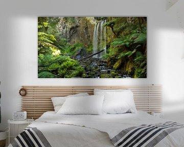 Hopetoun Falls, Victoria Australie