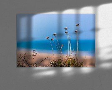 Atlantikküste 6 von Norbert Sülzner