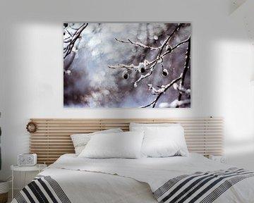 winter von Janka Kucerova