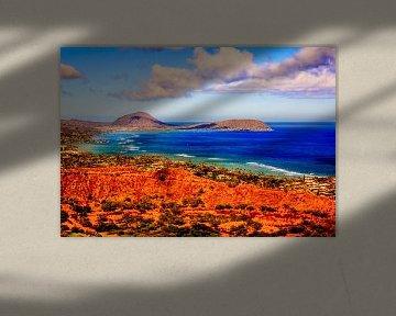 Hawaii van René Holtslag