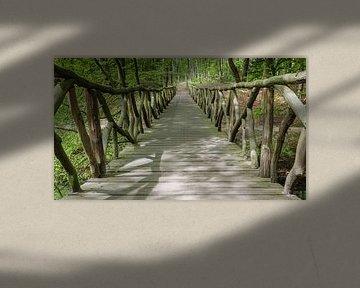 The Forest Bridge van Scott McQuaide