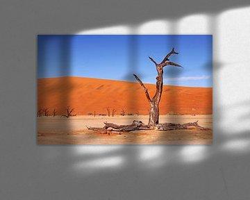 Im Dead Vlei Namibia