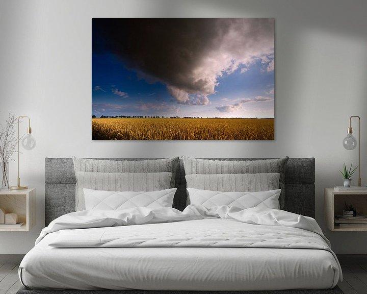 Sfeerimpressie: Nederlands Gronings graanlandschap met wolkenlucht van Mark Scheper