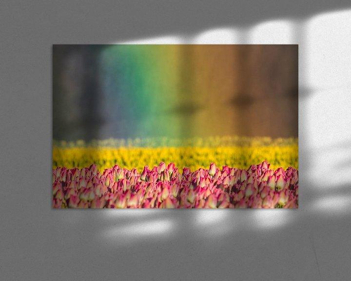 Sfeerimpressie: Tulpen in regenbooglicht van Karla Leeftink