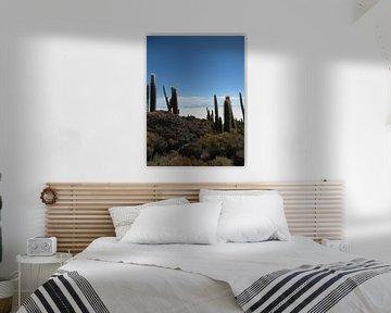 Zoutvlakte van Uyuni in Bolivia  van Bart Muller