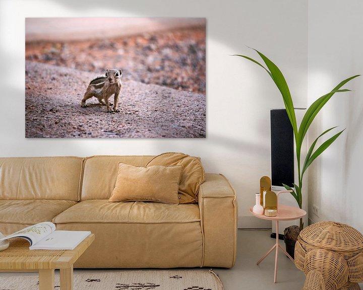 Impression: the chipmunk sur Meleah Fotografie