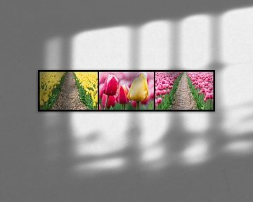 tulpen drieluik