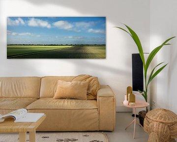 Uitgestrekte akkers in de vroege ochtend (panorama) van Bo Scheeringa Photography