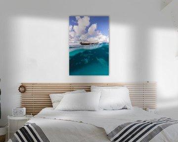Klein Bonaire onderwater van Andy Troy