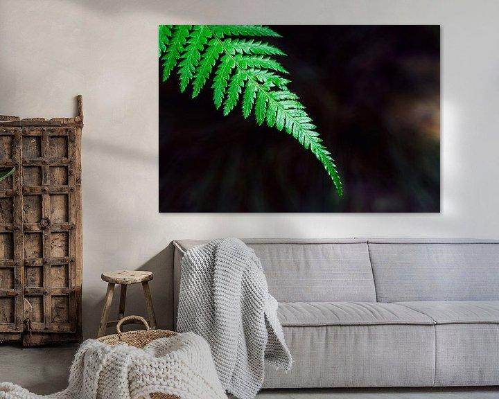 Sfeerimpressie: Palmengarten IV van Insolitus Fotografie