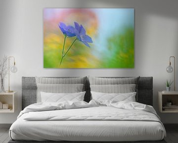 Lila Geranie ( Blume, malerisch und farbenfroh) von Cocky Anderson