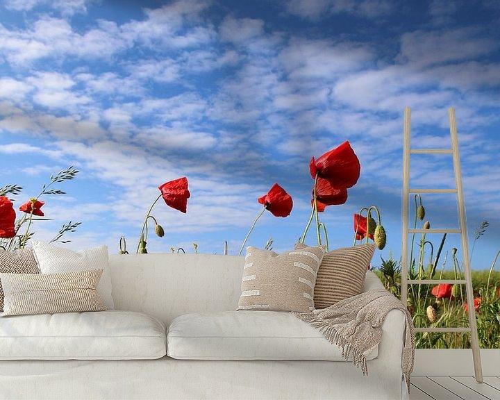 Beispiel fototapete: Mohnblumen im Wind von Ostsee Bilder