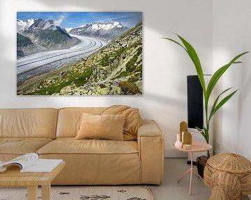 Aletsch Gletsjer van Chris Gottenbos