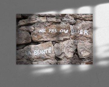 Schönheit auf einer Wand von Margot van den Berg