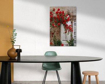 Roses are Red van Yvonne Blokland