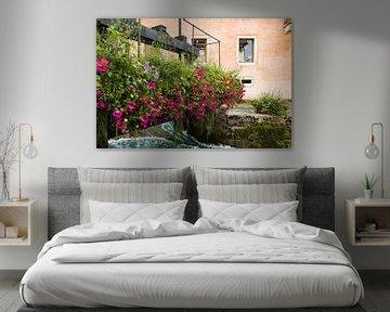 Bloemen van Hegemann fotografie
