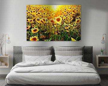 veld met zonnebloemen in tegenlicht von Paul Piebinga