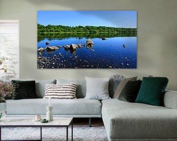 Bassenthwaite Lake van Gisela Scheffbuch