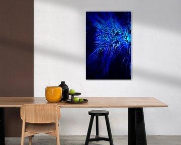 Blauw koraal von Studio Zwartlicht