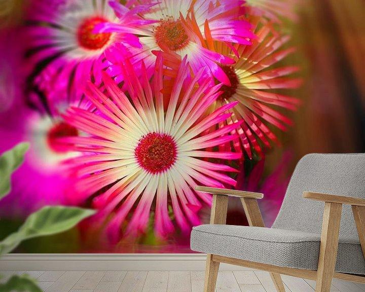 Sfeerimpressie behang: Sonnenanbeter pink van Dagmar Marina