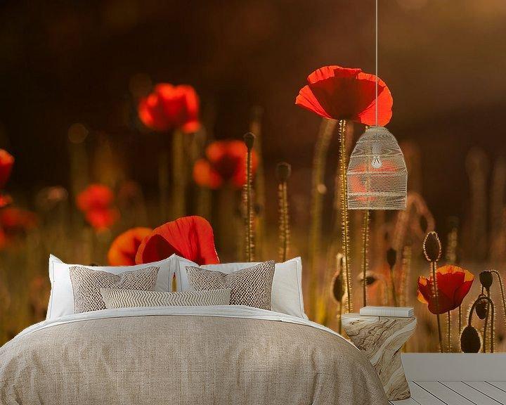 Sfeerimpressie behang: Het zomeravondgevoel (klaprozen met avondzon). van Birgitte Bergman