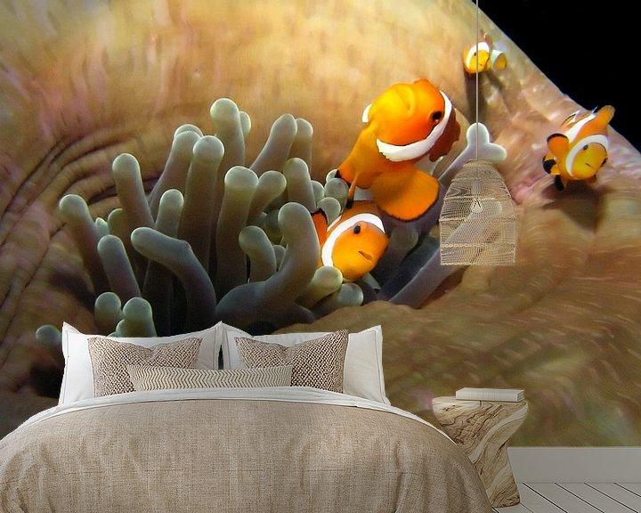 Sfeerimpressie behang: Anemonefish van Benno Neeleman