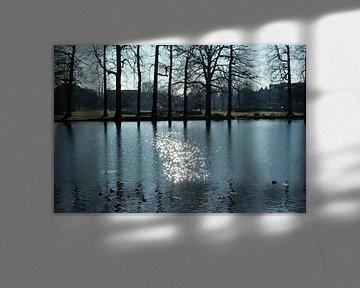 De Baroktuin in Arnhem van Ilse Schoneveld
